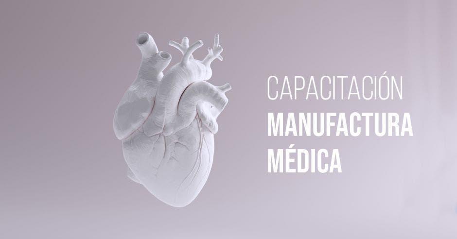 Válvulas del corazón