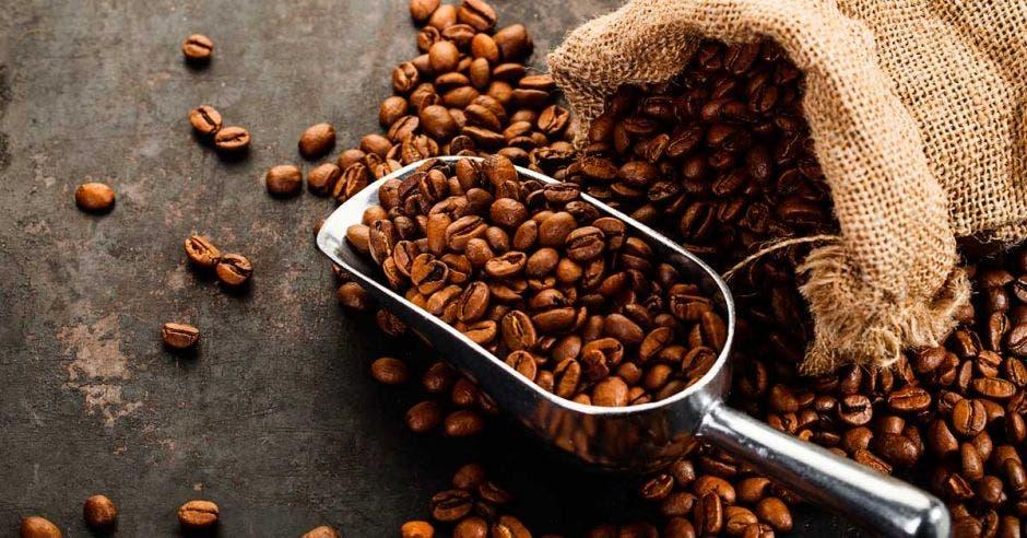 Grano de café fuera del saco