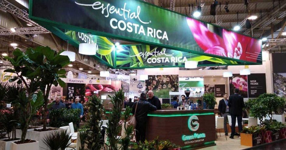 estand con exhibición de plantas
