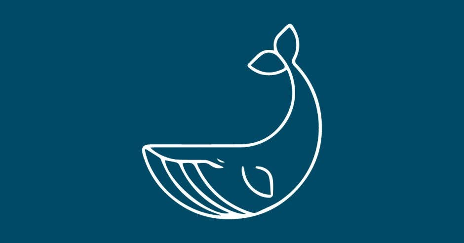 Una ballena sobre un fondo azul