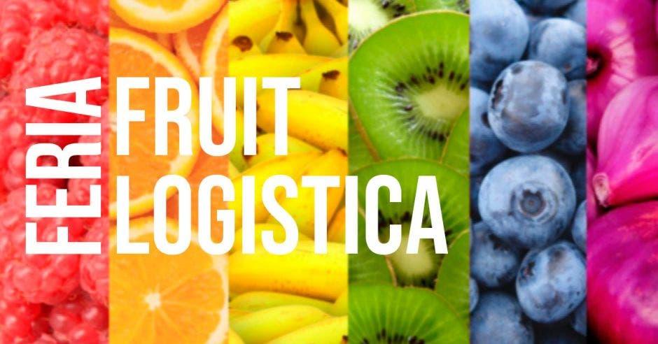 Feria Fruit Logística