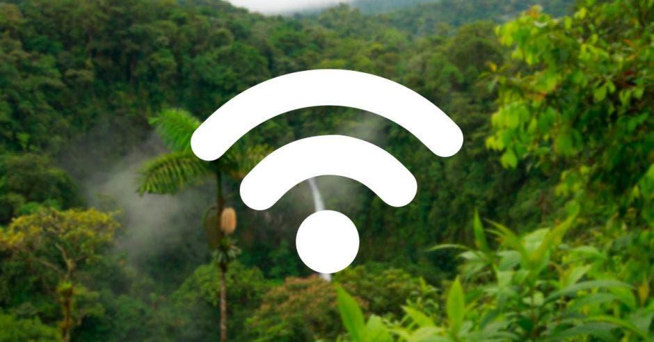 Un bosque con la señal de wifi