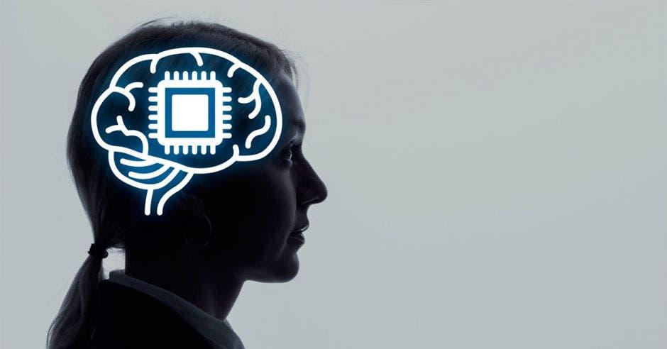 """""""No debería verse como una nueva disciplina, sino como una perspectiva neurocientífica del aprendizaje, el desarrollo humano y la enseñanza"""", sugiere Viviana Carazo. Shutterstock/La República"""