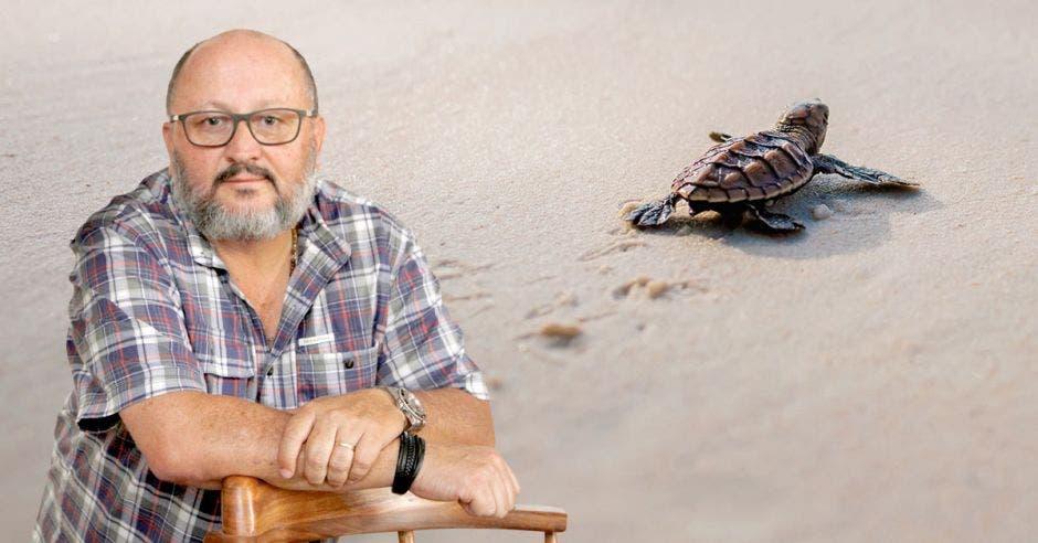 Latin American Sea Turtles ha capacitado a más de 60 mil personas en el país para que sean voluntarios, dijo Didier Chacón, creador de la ONG . Esteban Monge/La República