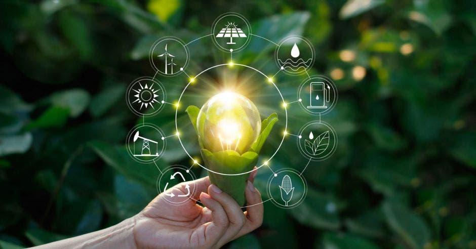 Seis retos amenazan la imagen ambiental del país.  Shutterstock/La República
