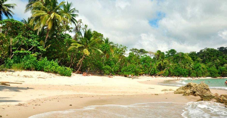 Una playa en Manuel Antonio