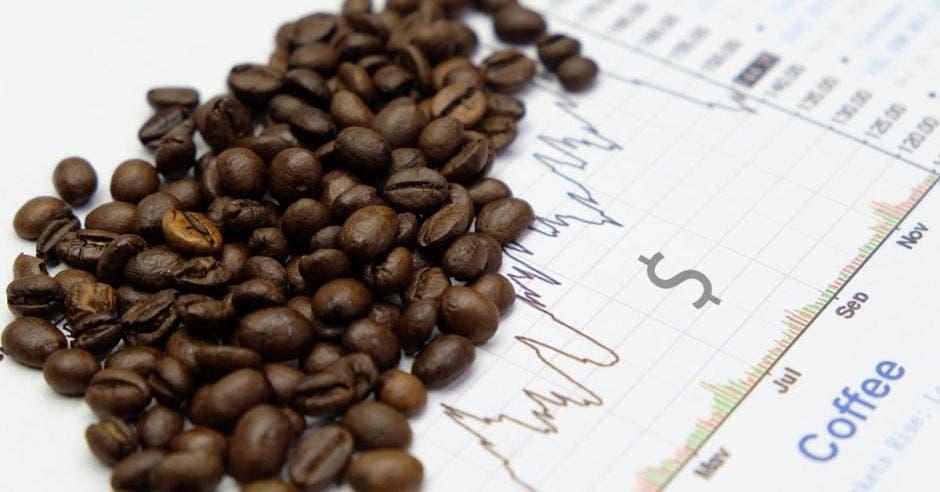 Una mata de café
