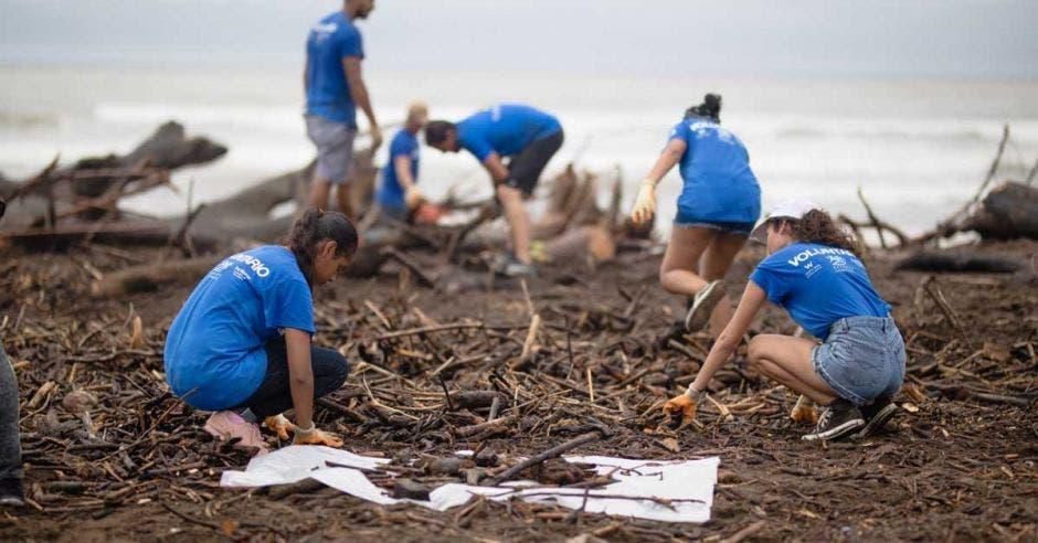 personas limpiando una playa