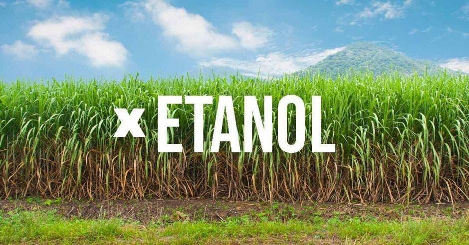 Recope pospone venta de etanol