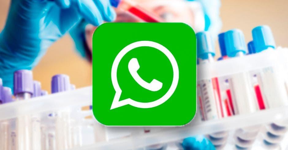 ícono de WhatsApp y atrás muestras de laboratorio