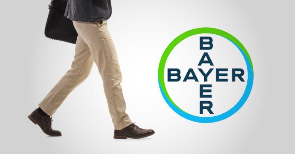 Experto de Bayer