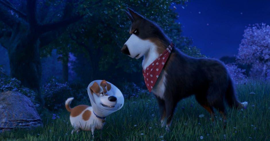 """""""La vida secreta de tus mascotas 2"""""""