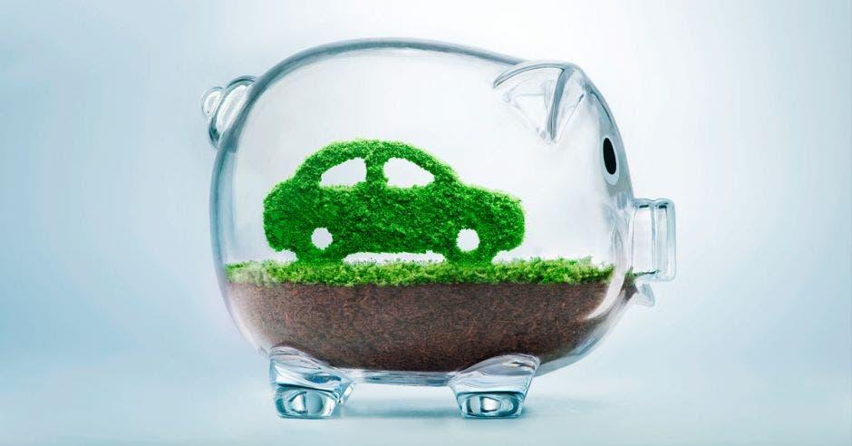 Ecocréditos se facilitan a servicios o bienes amigables con el ambiente. Shutterstock/La República
