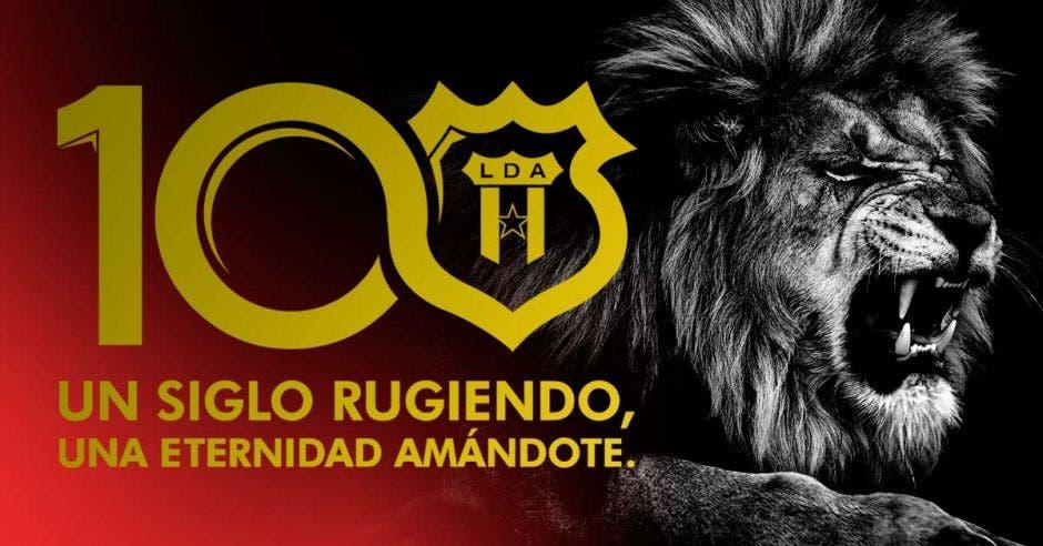 El León está de fiesta, ¡A celebrar carajo!. Shutterstock/La República
