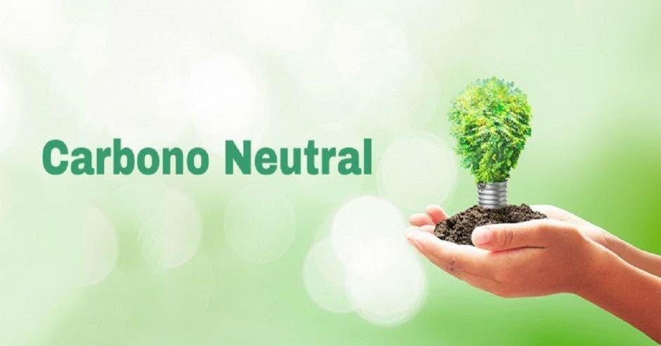 Unas manos sosteniendo un árbol junto con la palabra carbono neutral
