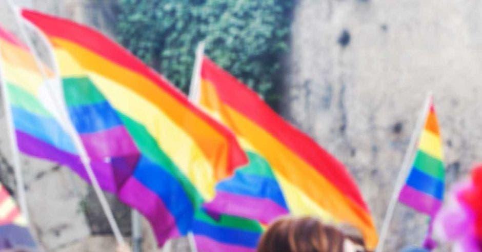 Banderas multicolor ondean en la calle.