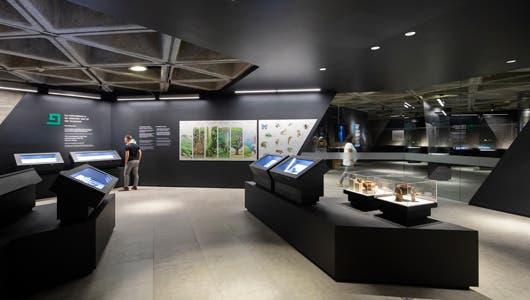 Museo diseño