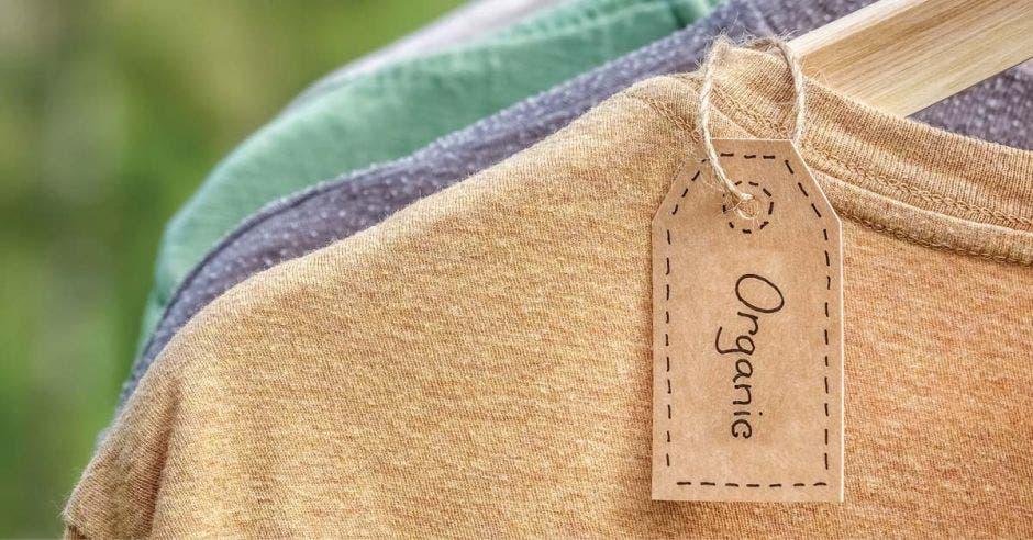 Camisetas de tela orgánica