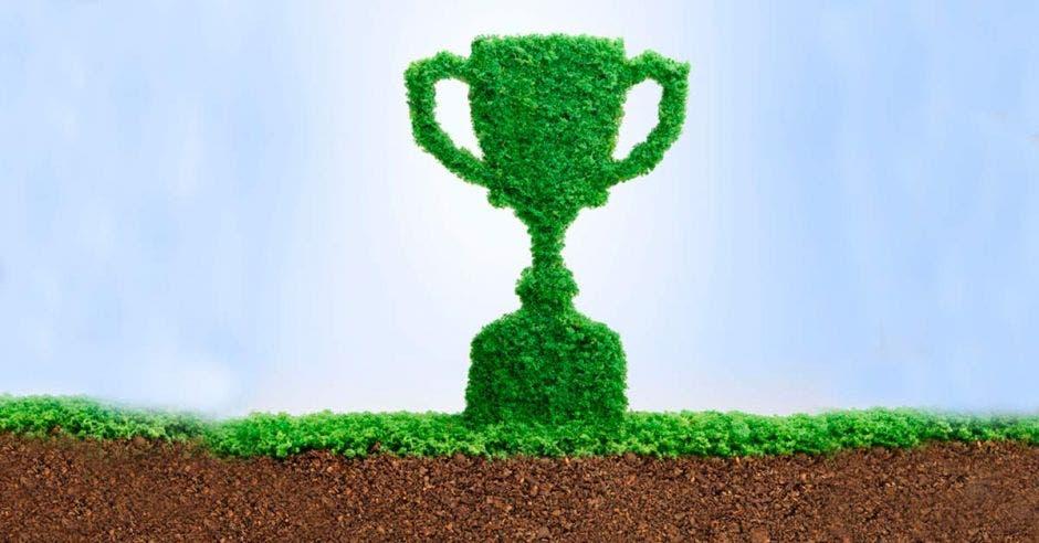 Un trofeo color verde