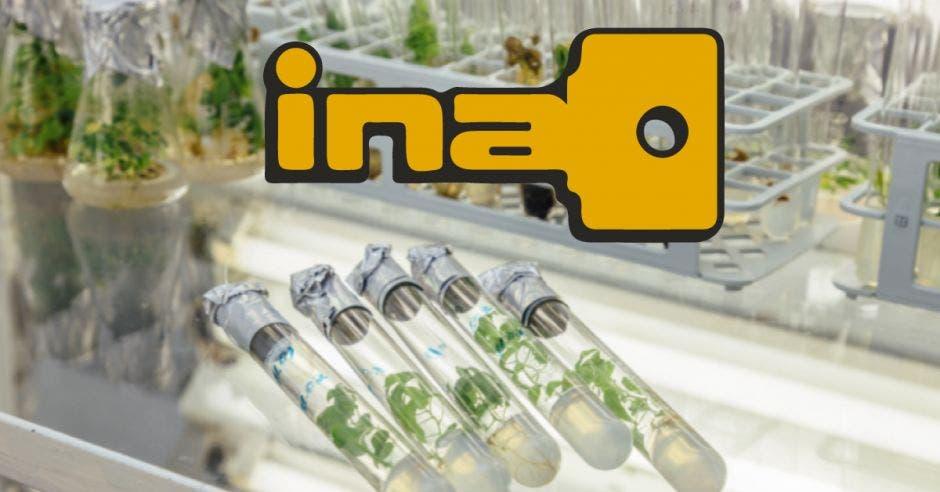 Utensilios de laboratorio y un logo del INA
