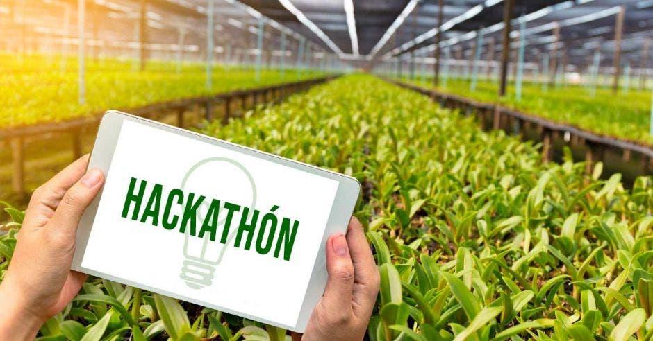 Hackathon de GIZ