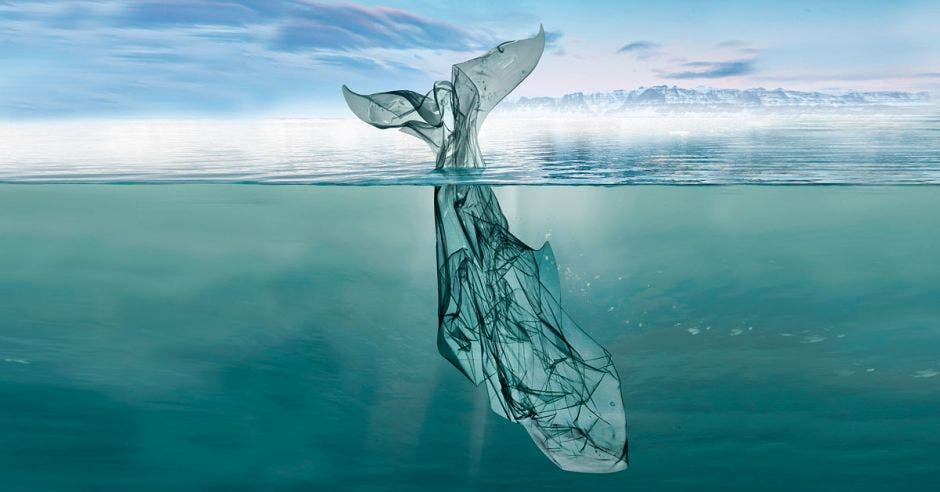 Una ballena de plástico