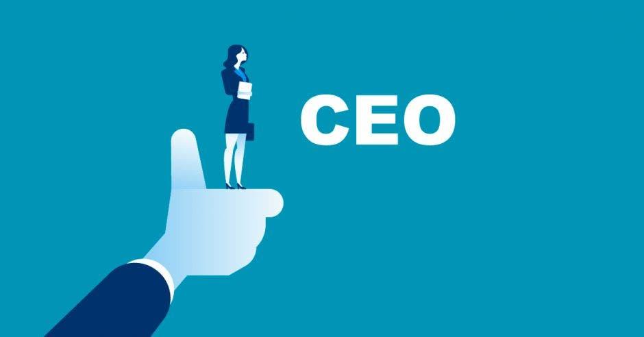 Mano, dedo, mujer, CEO