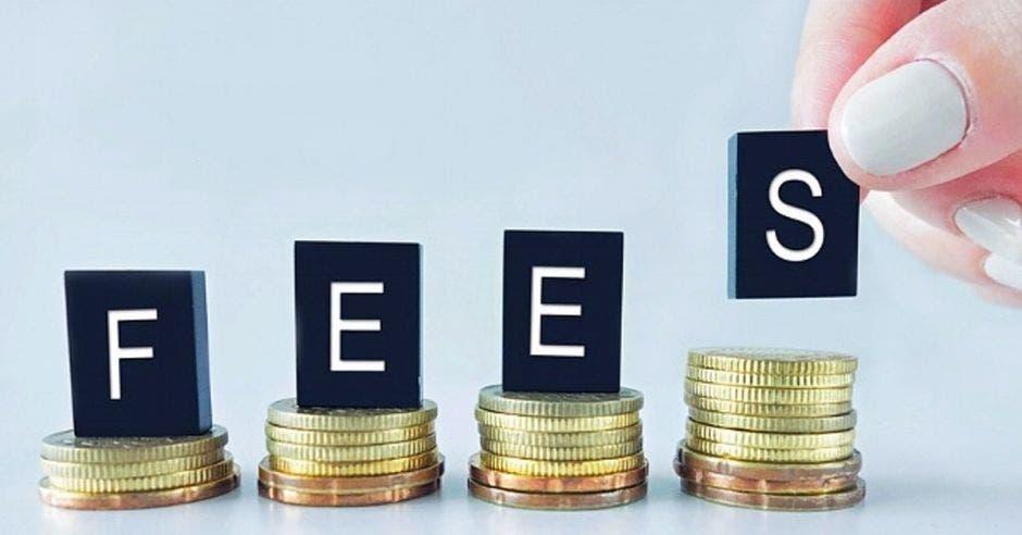 Presupuesto del FEES