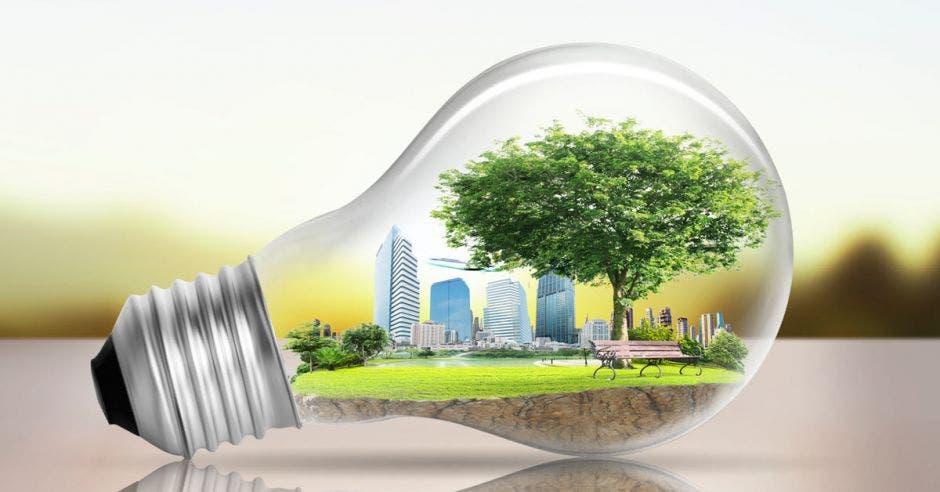 Una ciudad con energía renovable