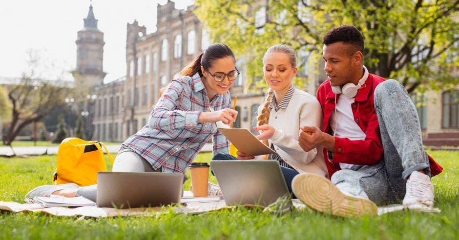 Varios jóvenes en un campus universitarios