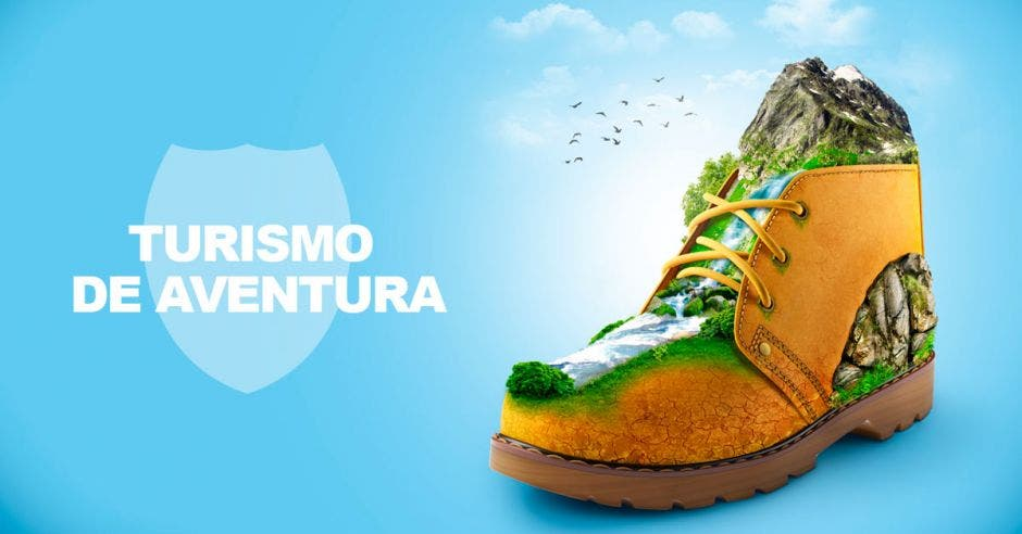 zapato con ilustraciones de naturaleza