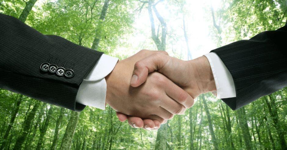 Un apretón de manos en signo de acuerdo