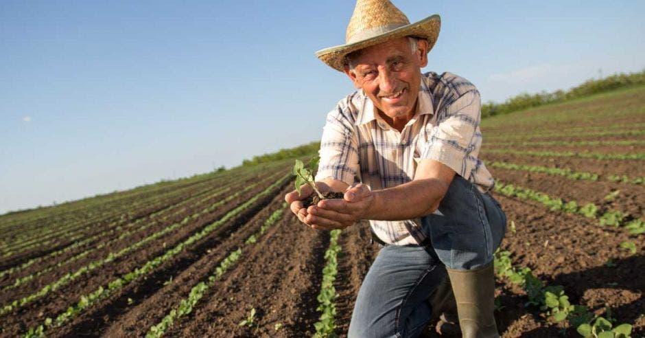Potenciar la asociatividad en las cadenas agrícolas es vital. Archivo/La República