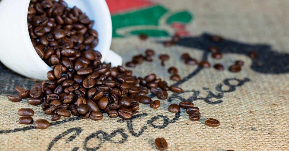 Tasa de granos de café regada