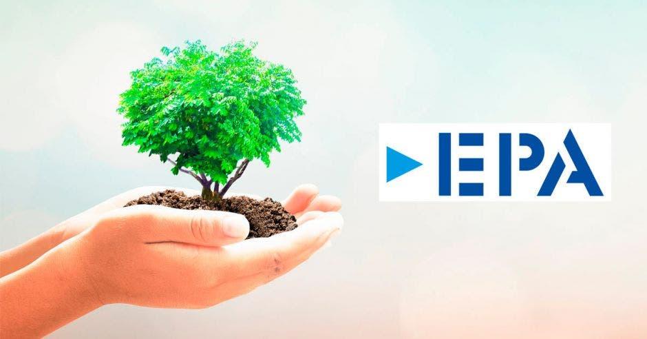 Un arbol junto al logo de EPA