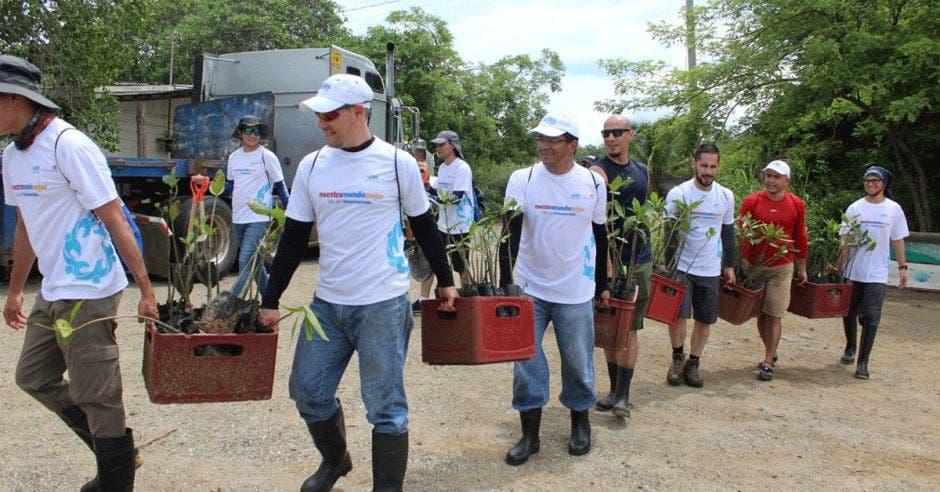 Un grupo de voluntarios colabora con acciones ambientales, como parte del plan de Responsabilidad Empresarial de AERIS