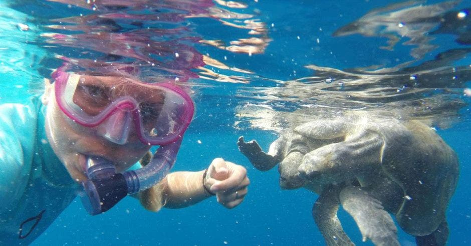 Figgener posa con dos tortugas