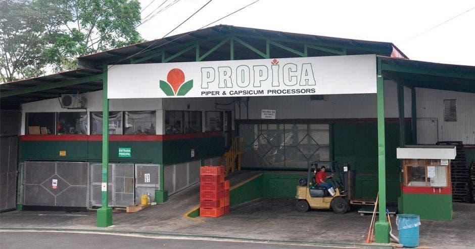 Propica
