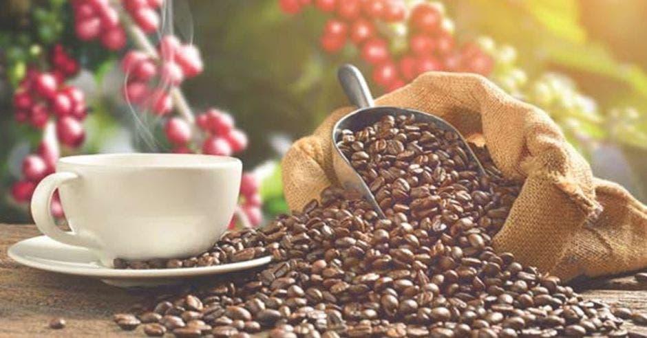 Granos de café y una jarra