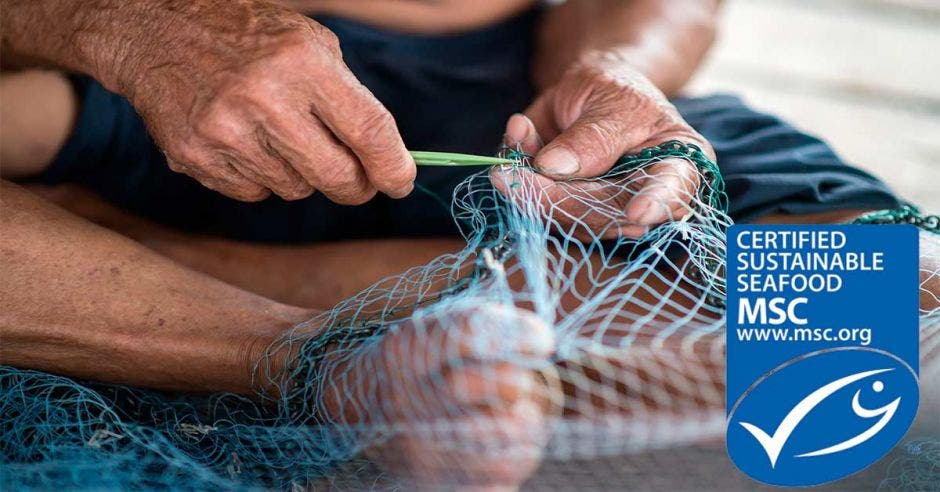 Alguien teje una red de pesca