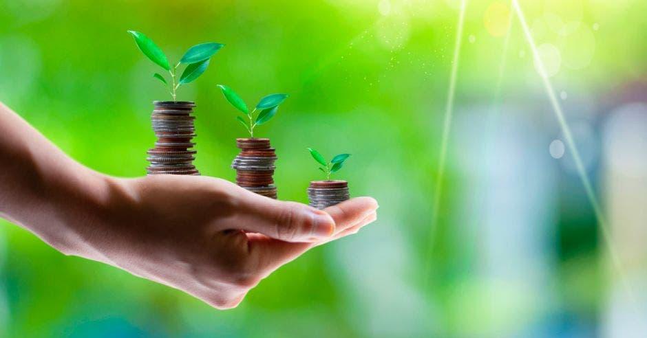 """""""Los bancos son agentes de cambio y creemos en estos objetivos de crecimiento para beneficiar al medio ambiente"""", manifestó, John Keith, gerente general de Banco Promerica Costa Rica. Cortesía/La República"""