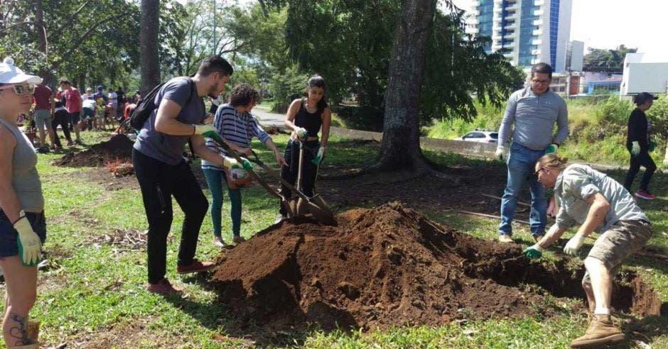 Un grupo de voluntarios siembra árboles en La Sabana