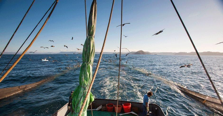 Una embarcación de pesca de arrastre