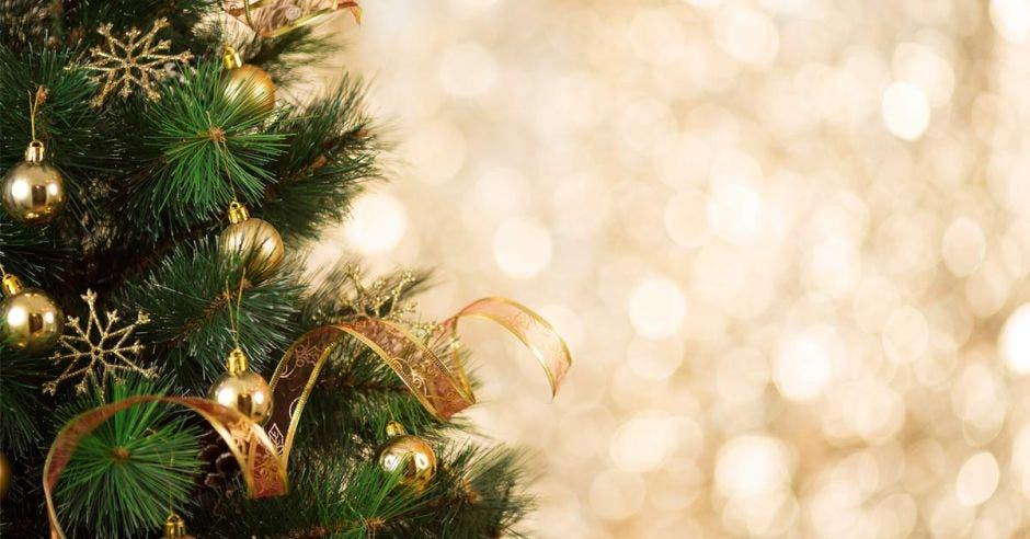 Un acercamiento a un árbol de navidad en el que se ve un adorno de la época navideña