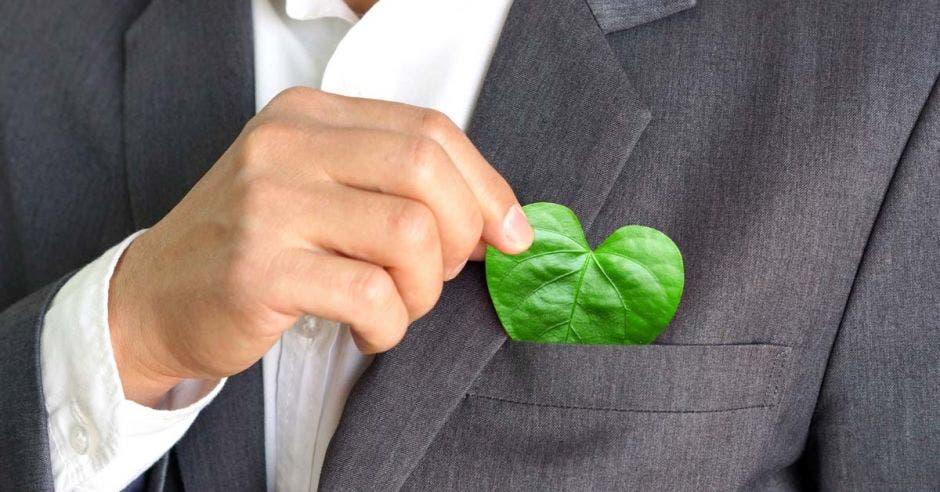 persona de traje entero, se guarda en el bolsillo del traje gris, una hoja en forma de corazón en su bolsillo