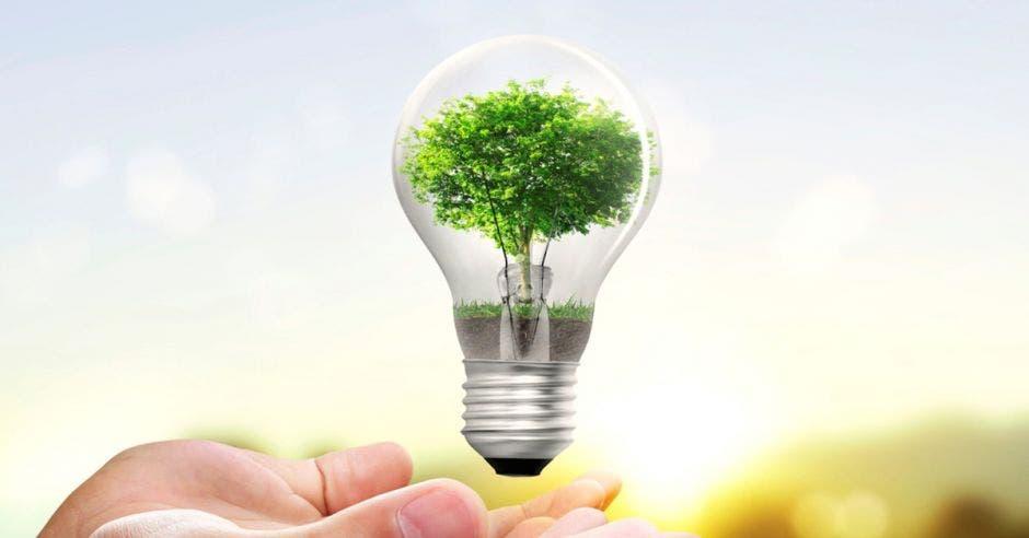 Ahorro electricidad