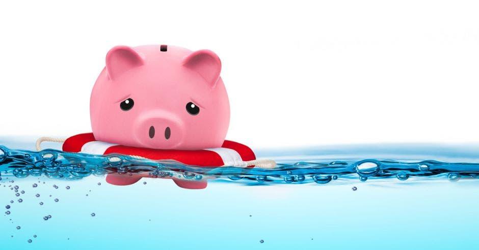 Alcancía de cerdo con flotador nadando sobre el agua