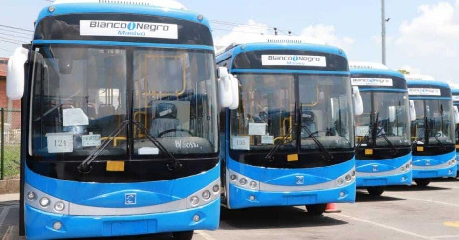 Buses eléctricos color azul parqueados en un plantel