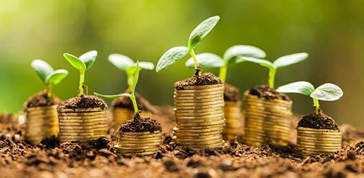 Un grupo de monedas en el suelo como parte del desarrollo sostenible