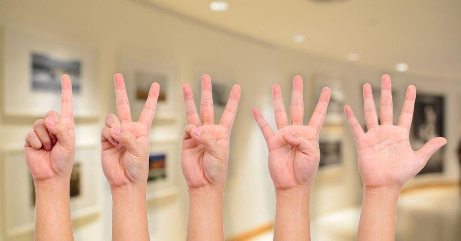 cinco manos, cada una diciendo un número
